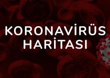 Koronavirüs Haritası